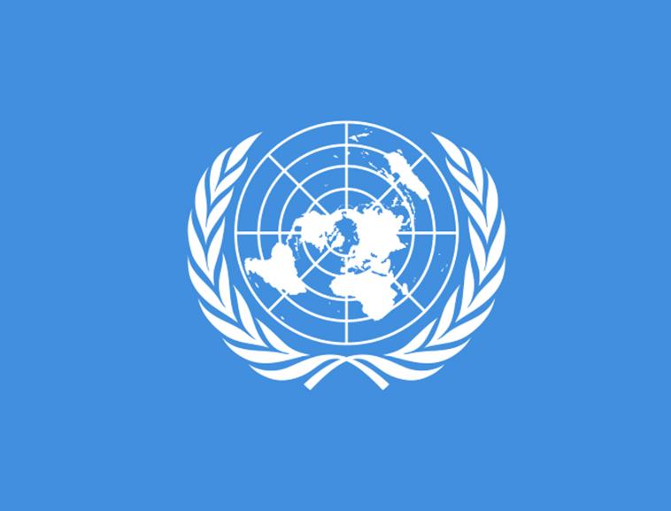 На полях 75-ї сесії Генасамблеї ООН відбувся тематичний захід щодо ситуації з правами людини в тимчасово окуповану Криму